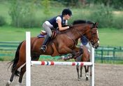 Конно-спортивные соревнования Уссурийского городского округа