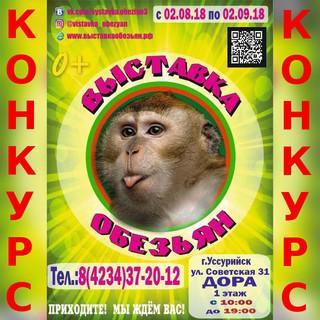 Выиграй билет на выставку обезьян!