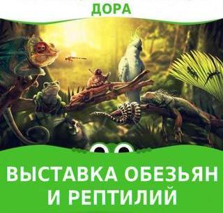 Выставка обезьян и рептилий