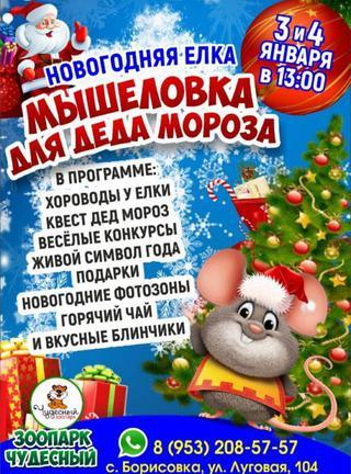 Мышеловка для Деда Мороза