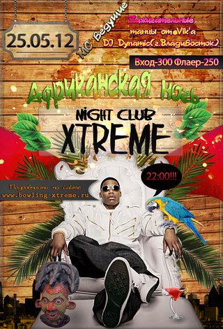 Африканская ночь