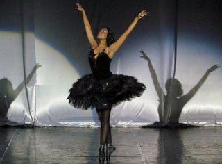 «Чёрный лебедь»