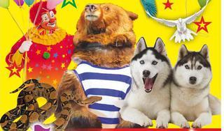 Волгоградский цирк «Эврика»
