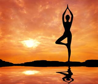 Лекции по теории и практике йоги
