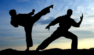 Международный фестиваль боевых искусств