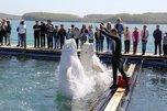 Воспитанники Уссурийского детдома научились определять виды морской фауны