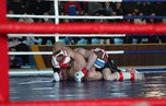 Открытый чемпионат по смешанному единоборству прошел в Уссурийске