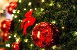 Благотворительная акция «Особенная елка» стартовала в Уссурийске