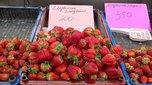 Уссурийские фермеры продают китайскую клубнику под видом местной