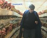 Фермеры из Уссурийска заботятся о стабилизации цен на продукты местного производства