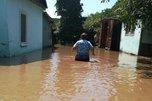 Нечистоты, трупы скота и химикаты с полей: потонувшее село в Приморье бьет тревогу