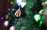 Дед Мороз поздравит детей Приморья с Новым годом через соцсети