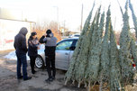 Сотрудники полиции провели рейд в местах продажи елей в Уссурийске