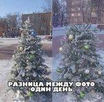 «Печально и противно»: увиденным на площади в Уссурийске возмущены горожане