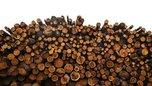Контрабанду лесоматериалов на сумму более 440 миллионов рублей выявила Уссурийская таможня