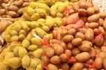Около 60 тысяч тонн картофеля собрали в Приморском крае