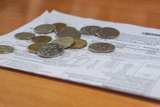 Приморцам за несвоевременную оплату электропотребления будет начисляться пеня