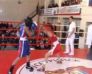 Уссурийские боксёры повторили прошлогодний результат в краевом турнире