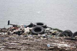 Свыше 5 тонн мусора оставил после себя в Уссурийске китайский овощевод