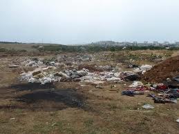 Овощеводы из Китая устроили свалки мусора под Уссурийском