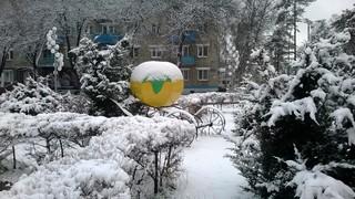 Первый большой снег пошел сегодня в Уссурийске