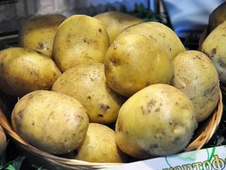 Ученые Уссурийска продегустировали 140 сортов картофеля
