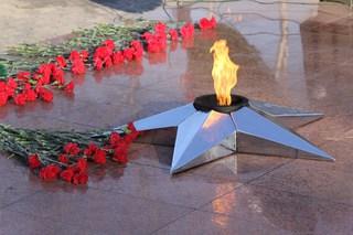 Возложением цветов и военным митингом встретили День защитника Отечества жители Уссурийска