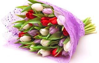 """Ussur.net поздравляет конкурсанток """"Мисс Уссурийск"""" и всех женщин с 8 марта!"""