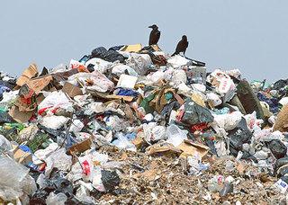 Две крупные мусорные свалки обнаружены на территории Уссурийского городского округа