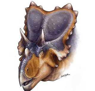 Археологи раскопали динозавра с ангельскими крыльями