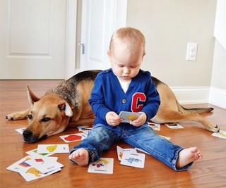 Малыш и пёс: очаровательная история дружбы
