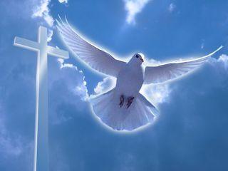 28 июля под Уссурийском в День Крещения Руси пройдет обряд массового Крещения
