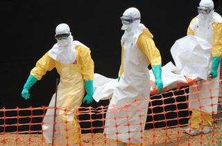 Число жертв вируса Эбола достигло 2097