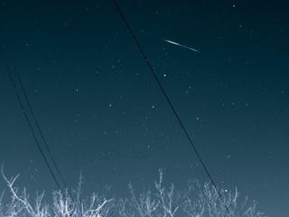 Жители Приморья увидят последний в этом году звездопад