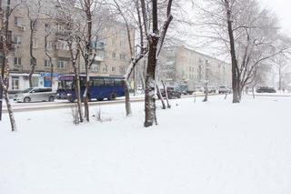 Автобусное сообщение между Уссурийском и Находкой прекращено из-за снегопада