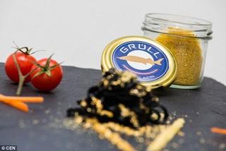 Австрийский фермер создал самый дорогой продукт — золотую икру