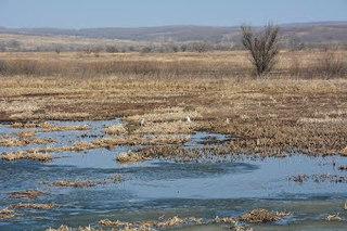 Лед вскрылся на реках Приморя