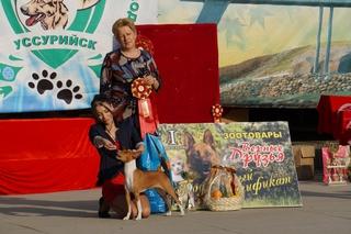 Представитель редчайшей породы 'азавак' стал победителем выставки собак в Уссурийске