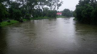 Уровень воды на реках Приморья повысится