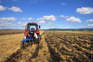 В Приморье фермеры получили гранты на развитие своего дела