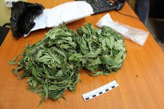 У мужчины на станции Уссурийск изьяли марихуану