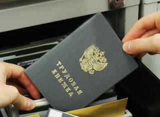 Телефон «горячей линии» по вопросам занятости в Приморском крае ведет свою работу