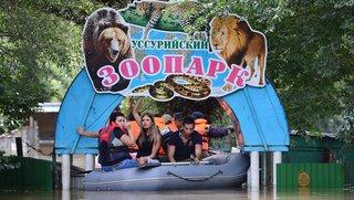 Новый зоопарк в Уссурийске построят совместными усилиями