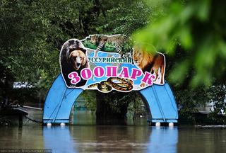 В Уссурийске разработан проект нового зоопарка
