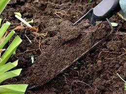 Cельхозпредприятие УГО применяло пестициды с нарушением законодательства