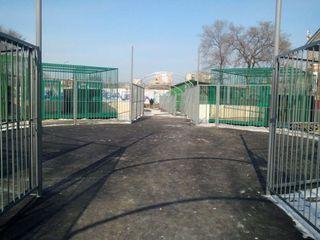 Новый зоопарк в Уссурийске планируют открыть в середине декабря