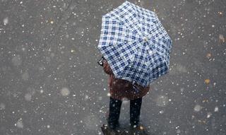 Уссурийск ждёт дождливая погода в первую неделю зимы
