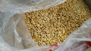 Уссурийская таможня предотвратила незаконный вывоз в Китай 46 кг гриба чаги и полтонны кедровых орехов