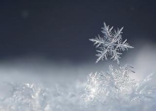 В начале следующей неделе синоптики обещают снегопад в Уссурийске