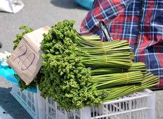 Ярмарка выходного дня на центральной площади Уссурийска приобрела статус сельскохозяйственной
